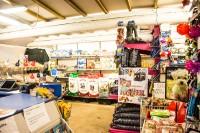 ørbæk-dyreland-butik-hund.jpg